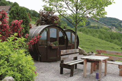 This Winery In Germany Lets You Stay Overnight In A Wine Barrel