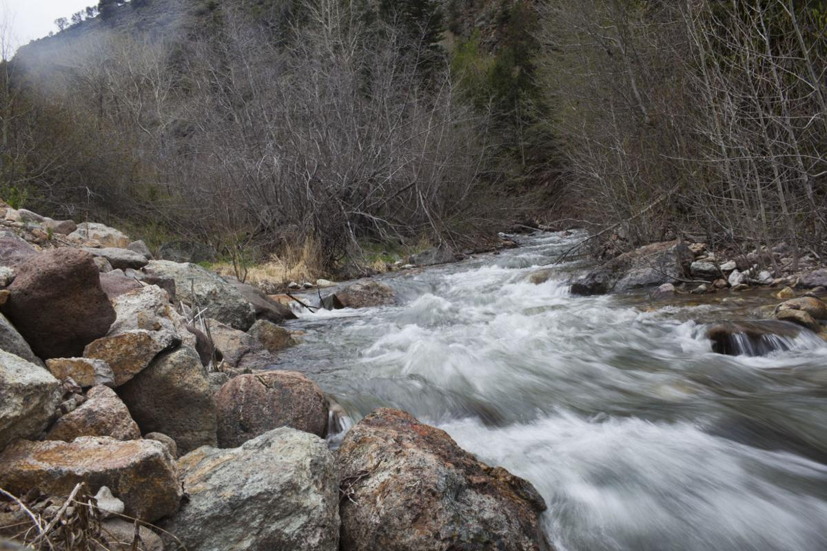 Jarbidge gold project scaled back