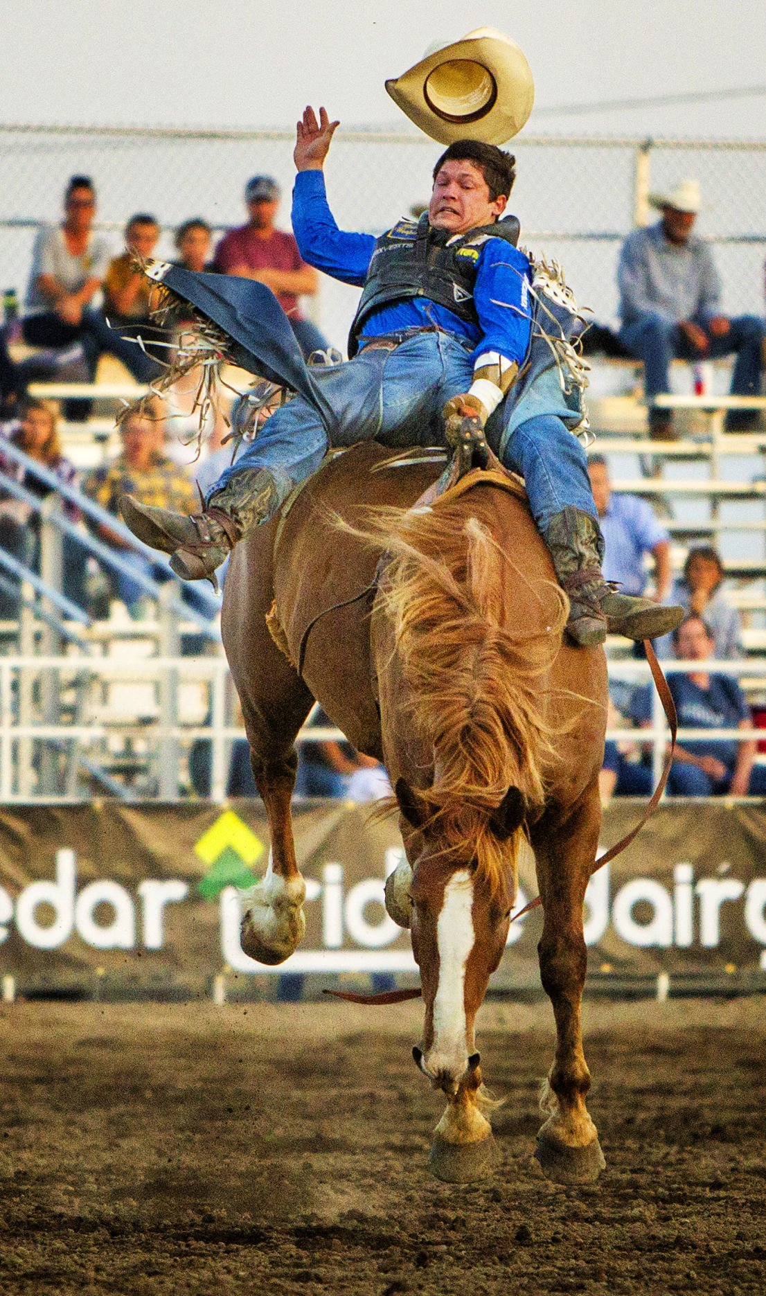 Four Things To Check Out At The Twin Falls County Fair