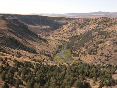 Eastern Idaho fire prompts offer of special hunts