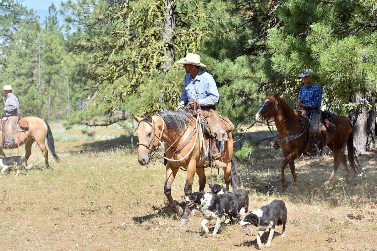 Midvale rancher