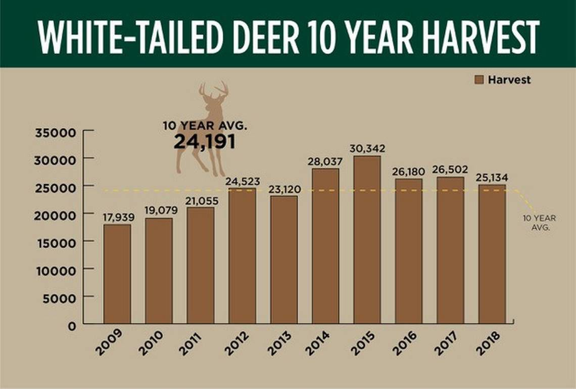 White-tailed deer 10-year harvest