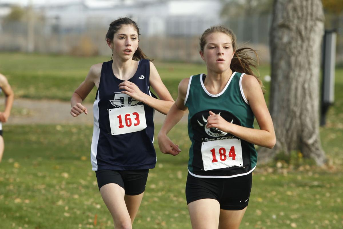 4A District IV Cross Country Championships (copy)