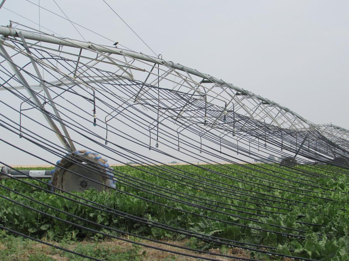 mobile drip offers promise southern idaho agriculture news