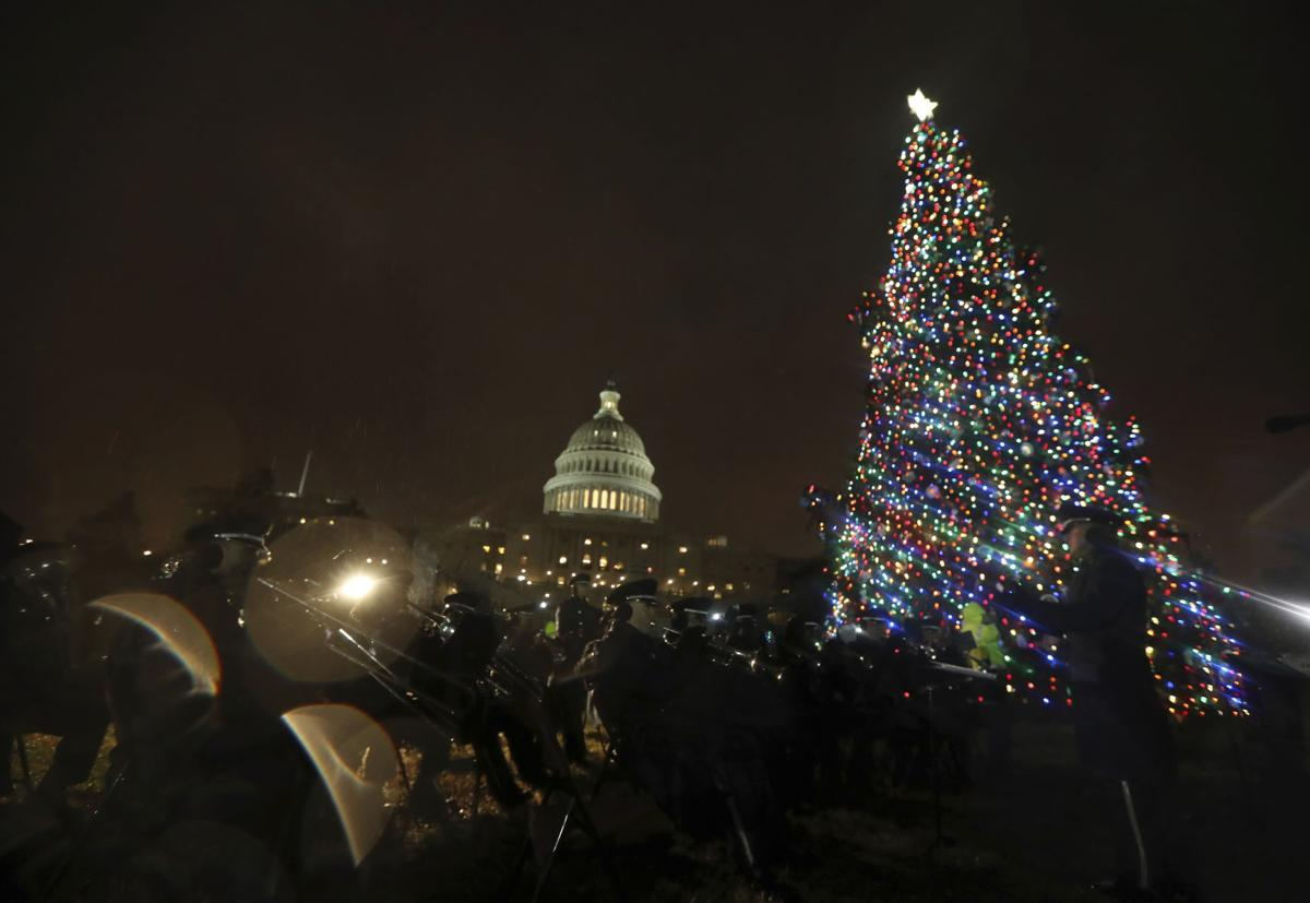 Capitol Christmas Tree.Christmas Tree From Idaho Lights Up Capitol Lawn Southern
