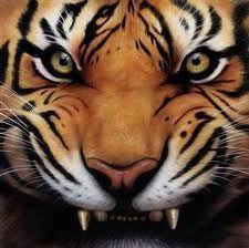 Richfield Tiger