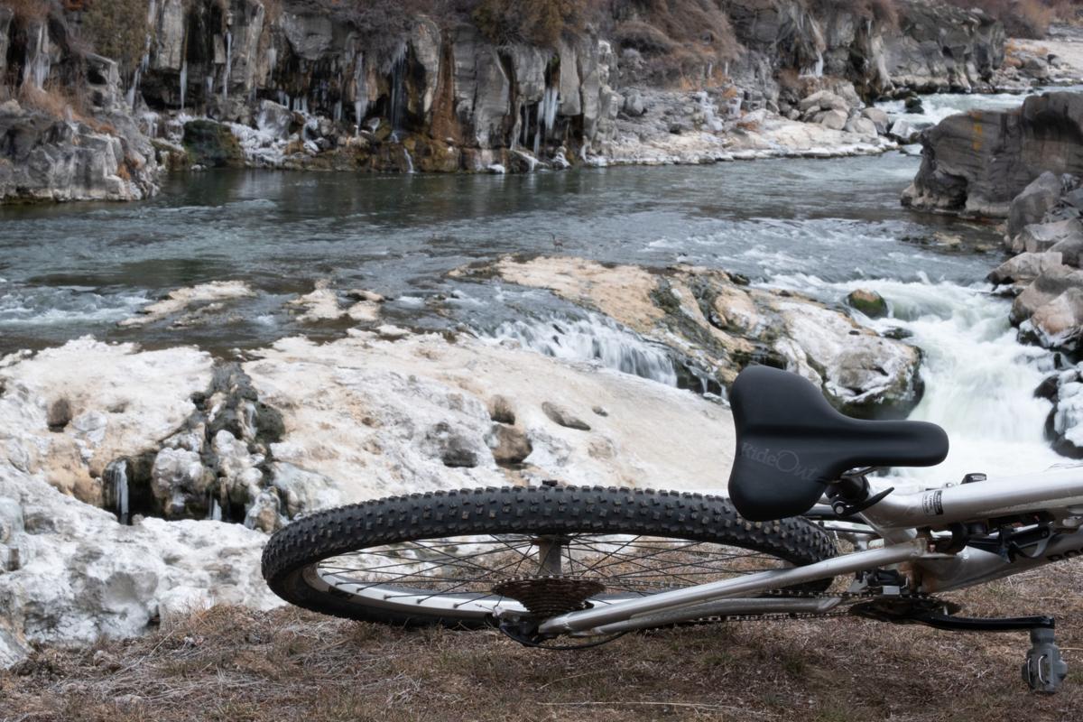 Challenger Bike Seat