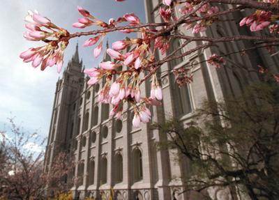 Mormon LDS LAtter-day Saints temple