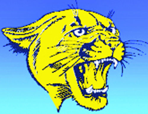 Carey Panthers Logo