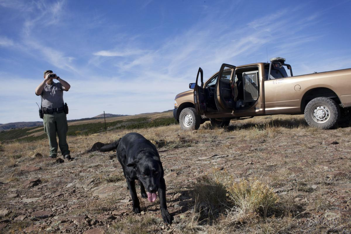 Gallery fish and game officer investigates southern for Idaho dept of fish and game