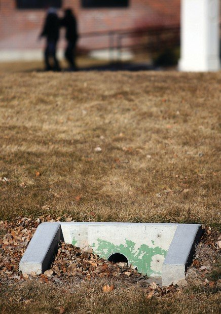 Now is the time to fix drainage issues in your yard | Home ...