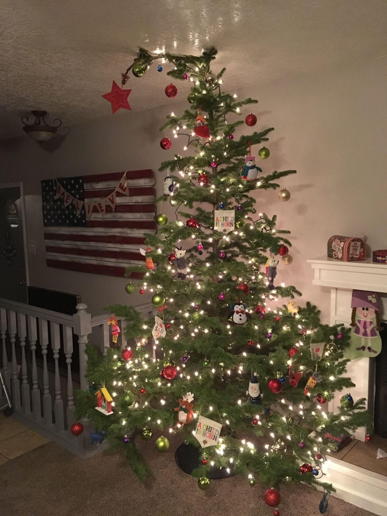Christmas tree PHOTOS Letu0027s see your Christmas