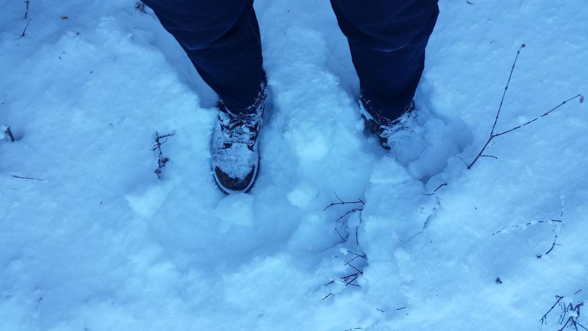 BLOG: A Floridian Sees Snow for the First Time