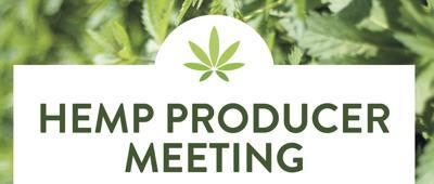 Hemp production