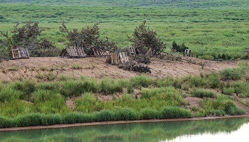 montecello-pallet-habitat.jpg__500x285_q85_crop_subsampling-2_upscale.jpg