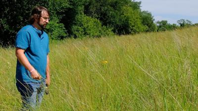 Chasing Palmer: Minnesota tries to stop high-cost invasive weed