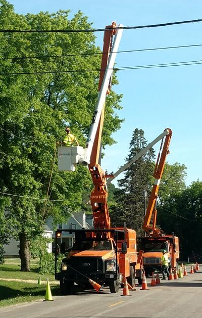 Power line trimming