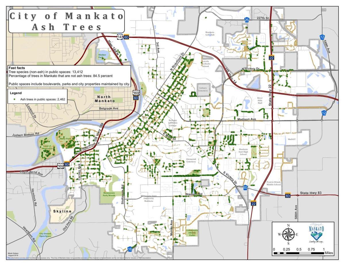 City Ash Map