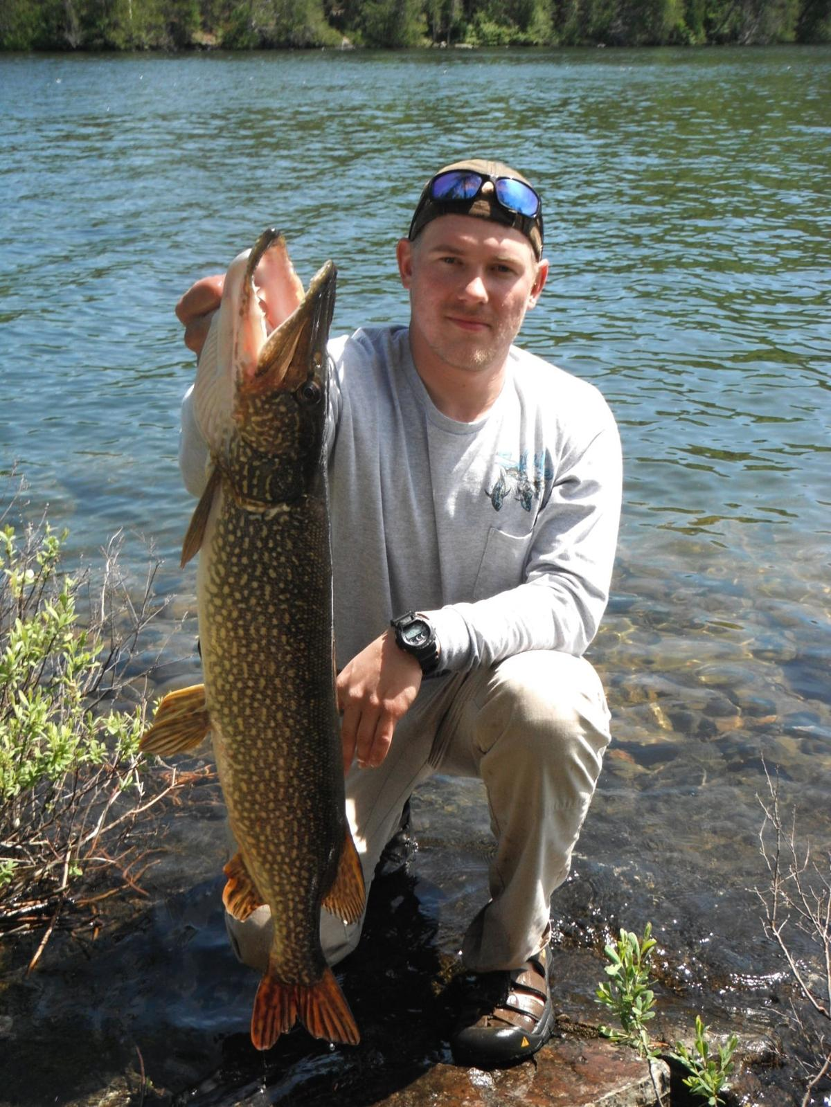 Outdoors column northern pike trophy food or nuisance for Northern pike fishing