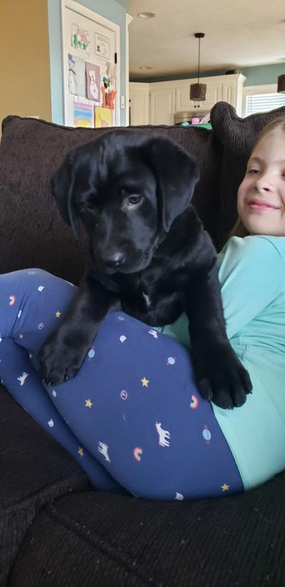 mackenthun puppy foto