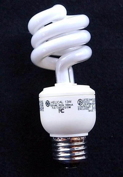 bulbs (copy)