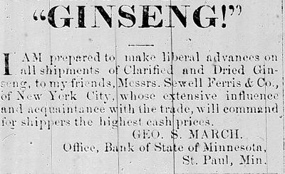 Ginseng sales helped area survive 19th century depression