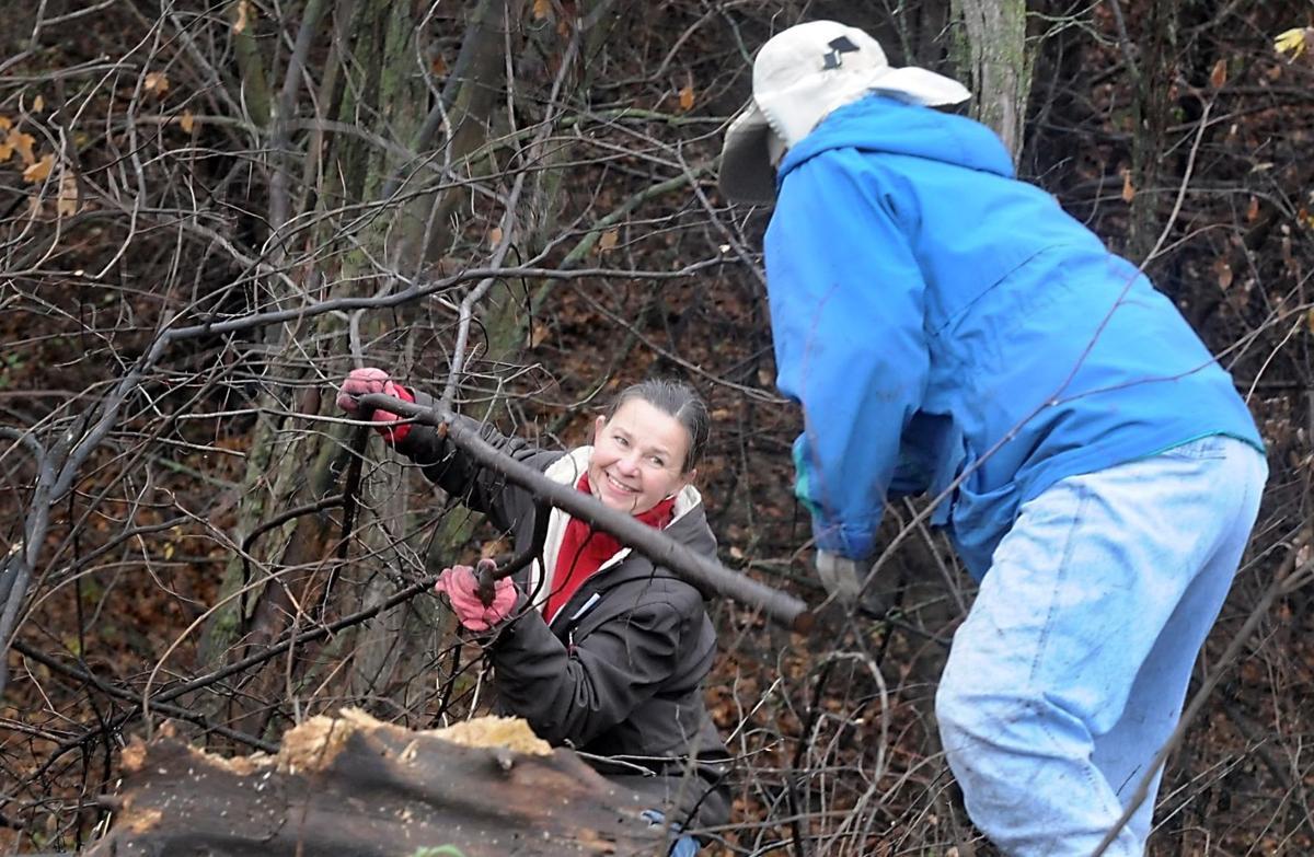 Great River Greening volunteers