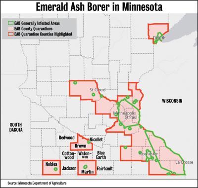 Web ash borer map