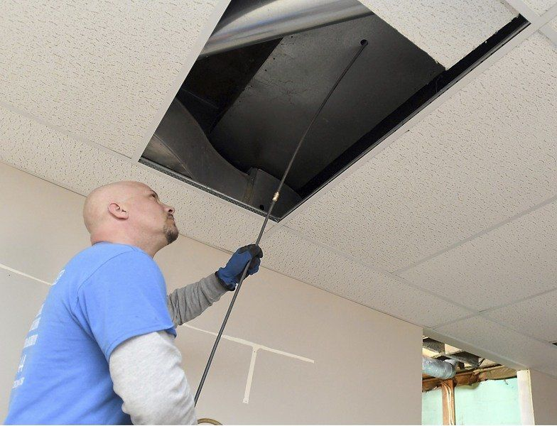 grime to rodents ductwork cleaners find them all local news