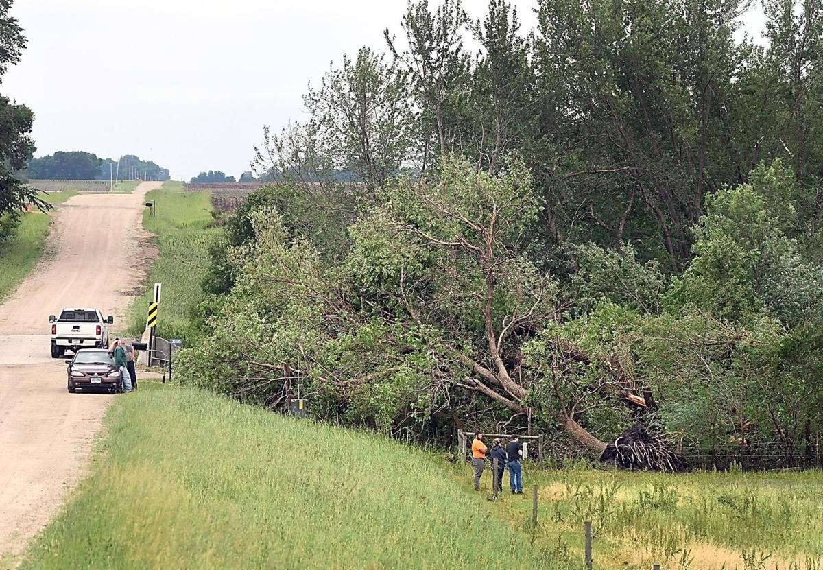 Storm damage 2