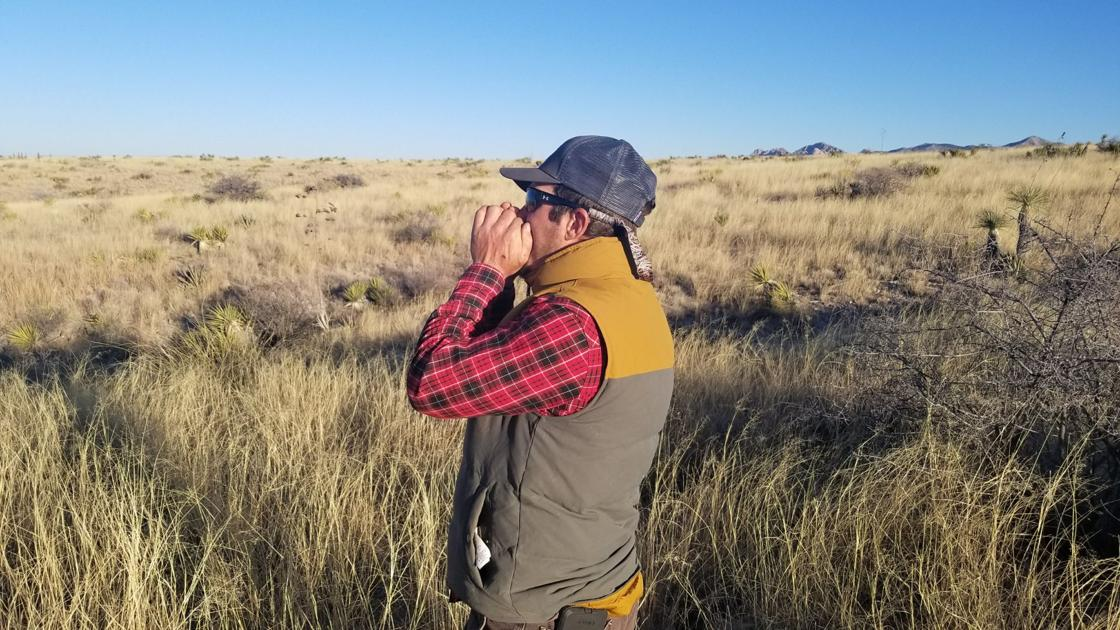 15c28a20a499c Outdoors column: Upland bird game guide works border to border | Sports |  mankatofreepress.com