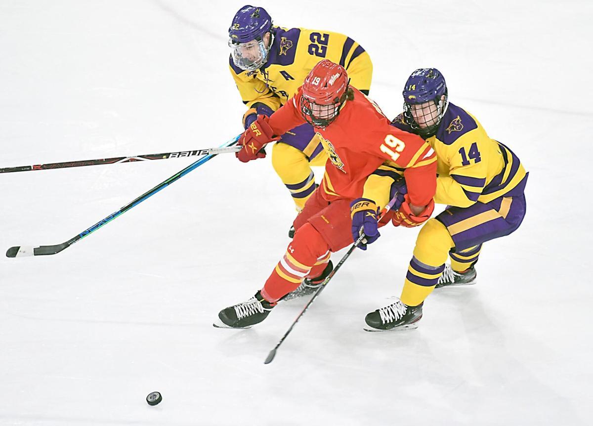MSU men's hockey v. Ferris State 2