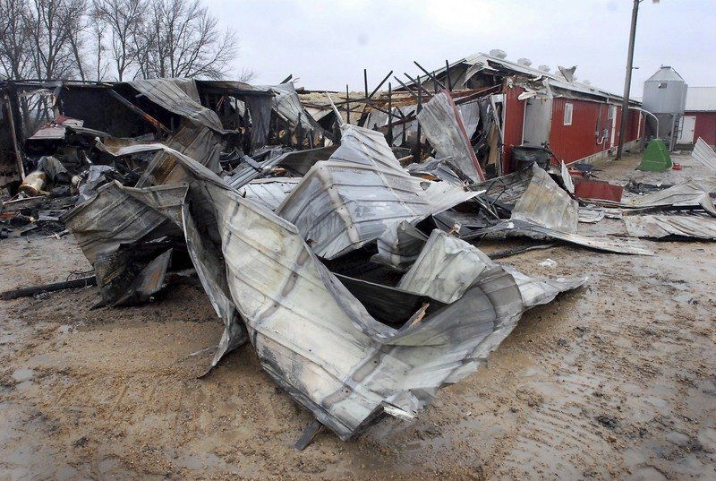 Fire wrecks hog barn, 150 pigs killed