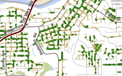 Mankato ash tree map