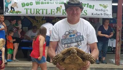 Turtle racing