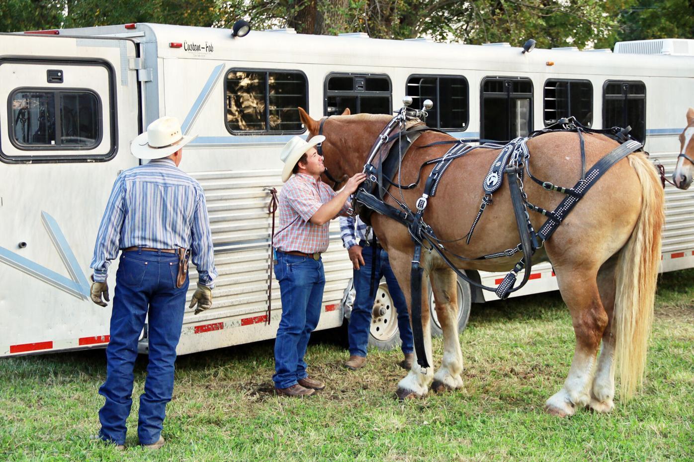 9-9-21 Pickering Horse Show 2.jpg