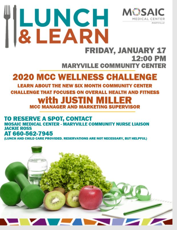 Mosaic Lunch and Learn