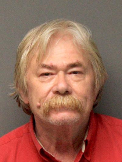 Lawrence Wayne Davison guilty plea (copy)