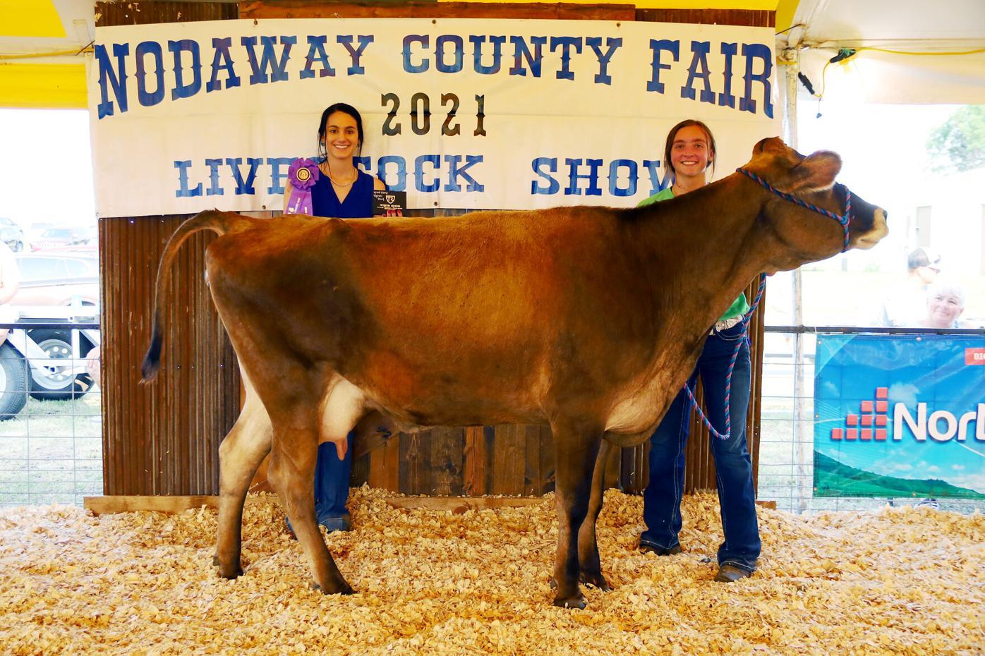 7-15-21 LS - Beef 3 - Grand Champ Supreme Dairy - Sarah Langford.jpg