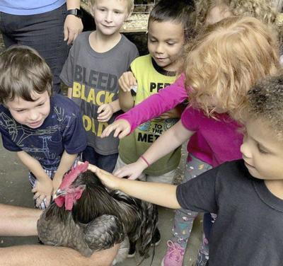 5 THINGS TO KNOW: Annual Pittsburg County Free Fair coming again soon