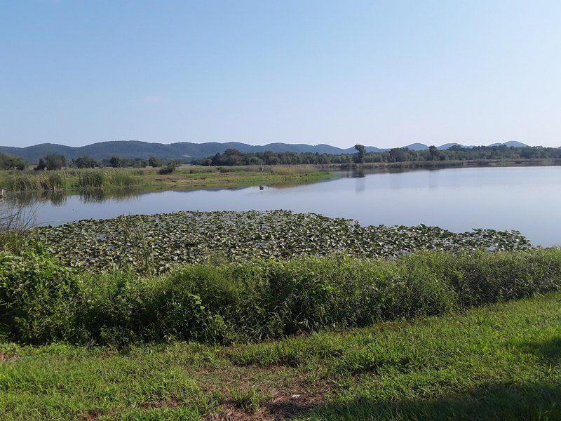 CATHEY: Nanih Waiya: 'Mother Mound' and First Capital of the Choctaw Nation of Oklahoma