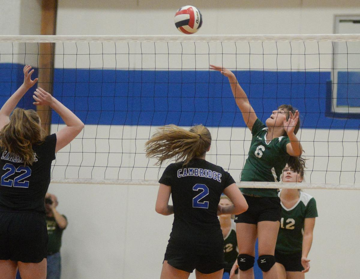 Girls Volleyball - Cambridge Springs vs. Union City