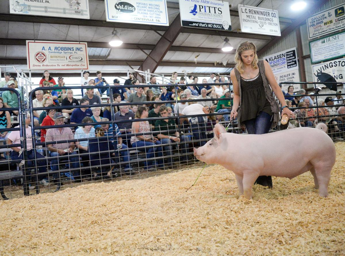 CRAWFORD COUNTY FAIR: Morgan's hog breaks record during