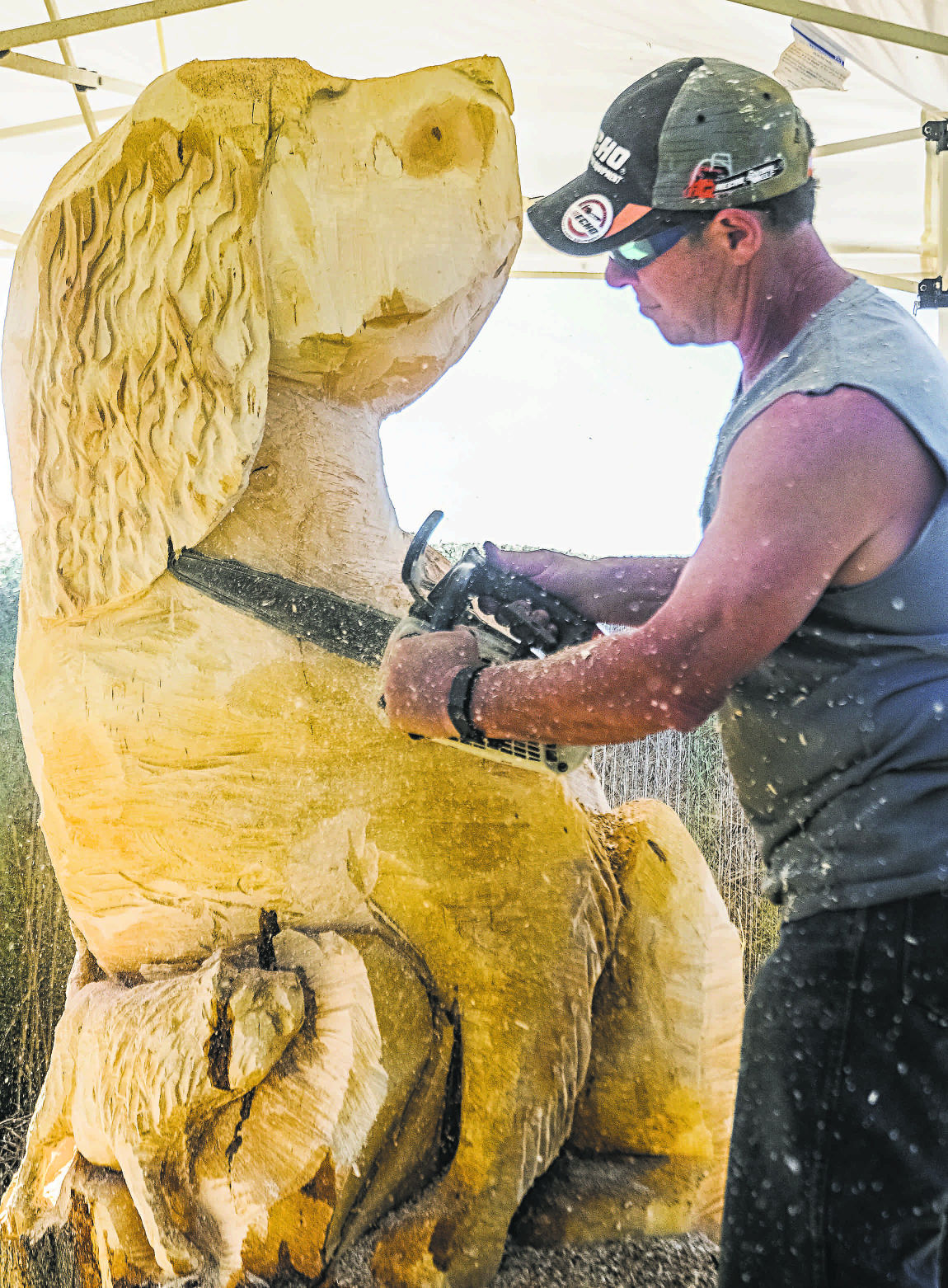 Roche park adds another wooden creature with chainsaw