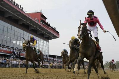 preakness stakes 2020 post positions