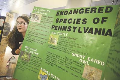 Environmentally informed citizens sought during Creek