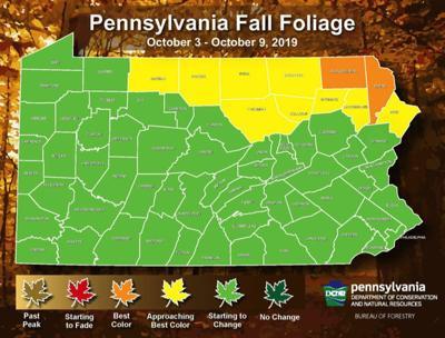 Foliage report Oct 3-9, 2019