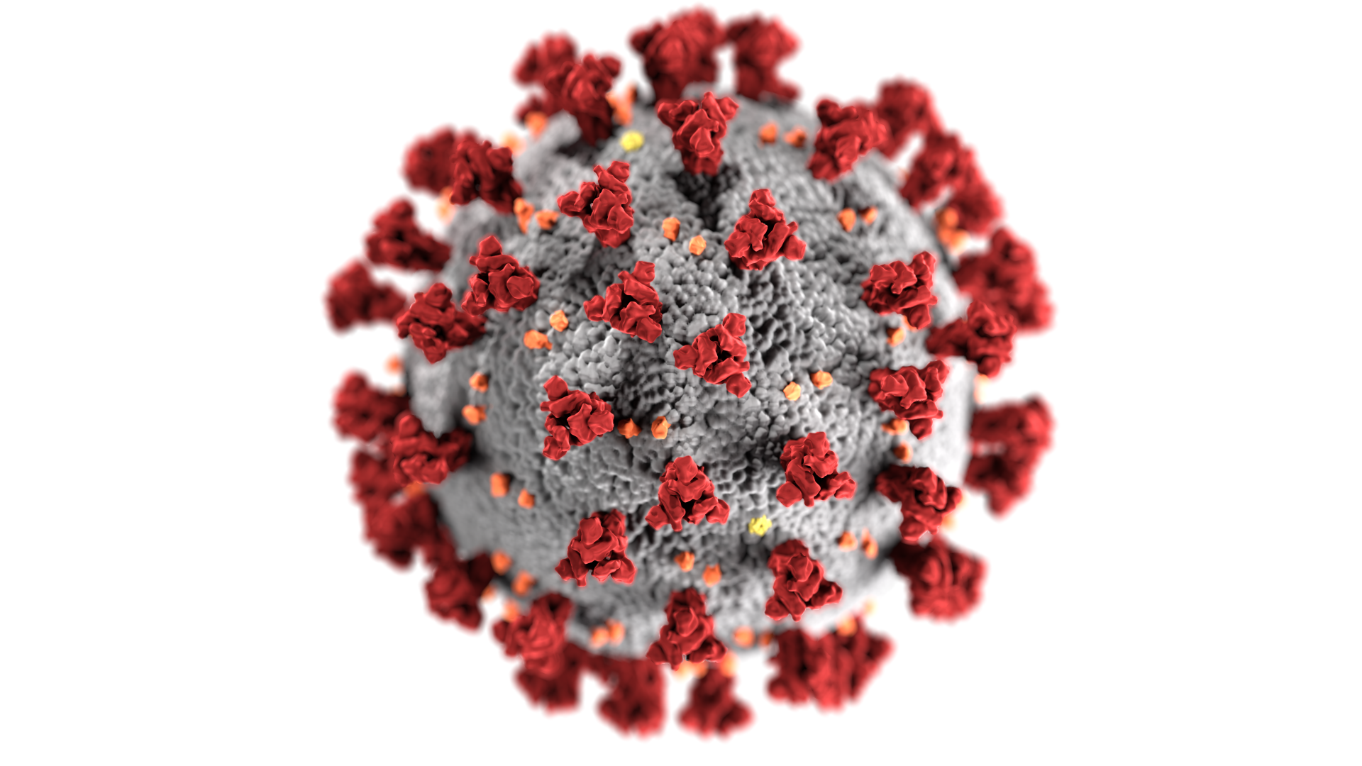 2 coronavirus cases reported in Crawford County -- COVID-19 report, July 30