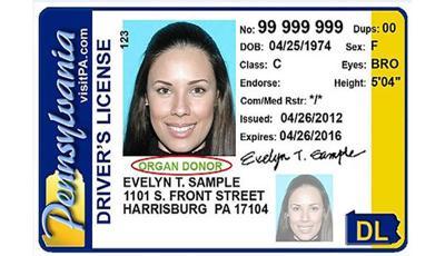 pennsylvania drivers license renewal cost