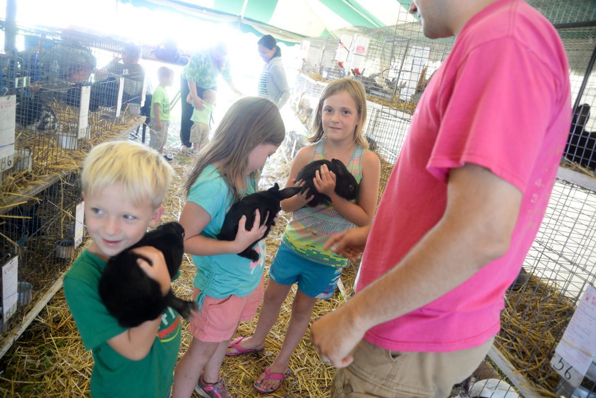 Cochranton Community Fair